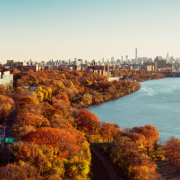 An image of a city against fall foliage.