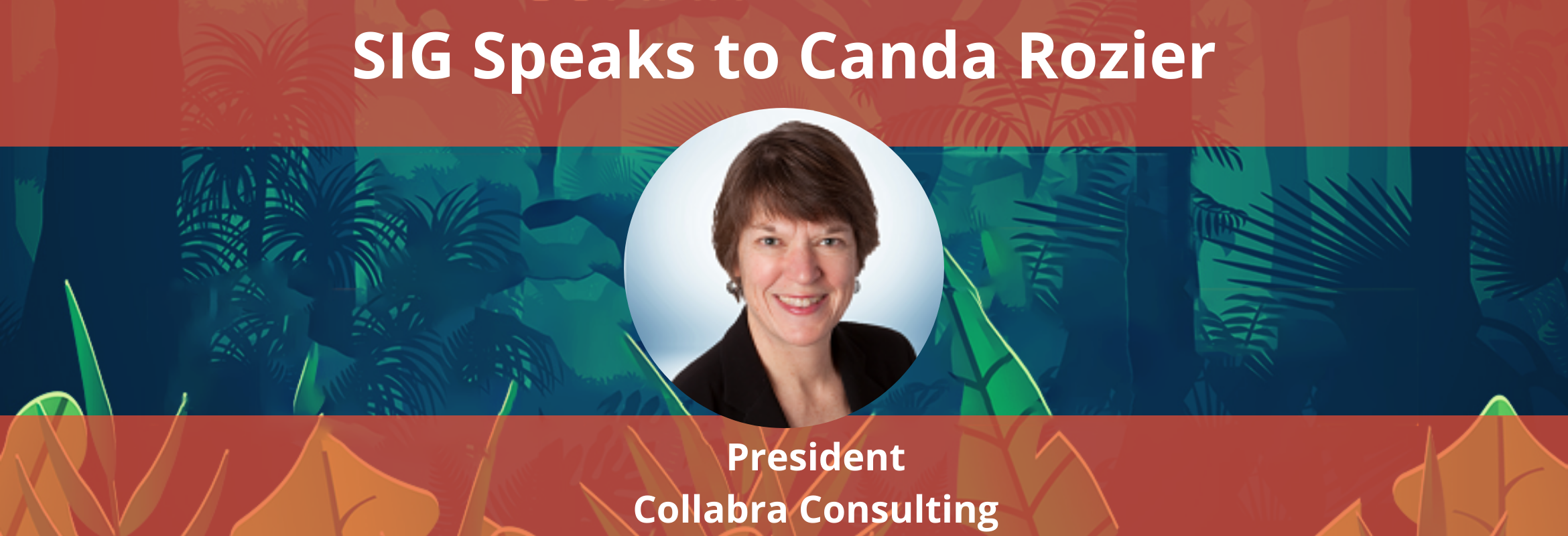 Canda Rozier is the Owner/President at Collabra Consulting